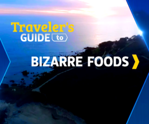 Coastal Sunset with text that reads Traveler's Guide to Bizarre Foods